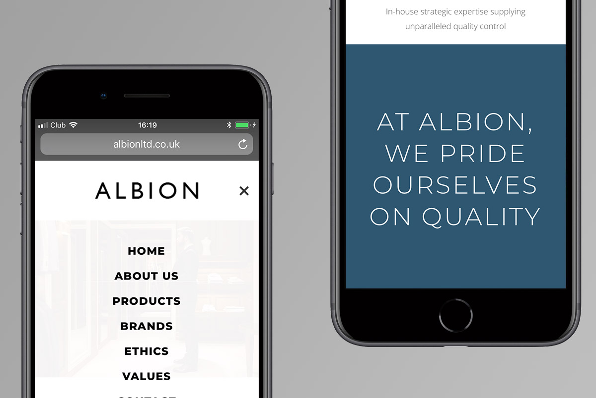 Albion Ltd website design