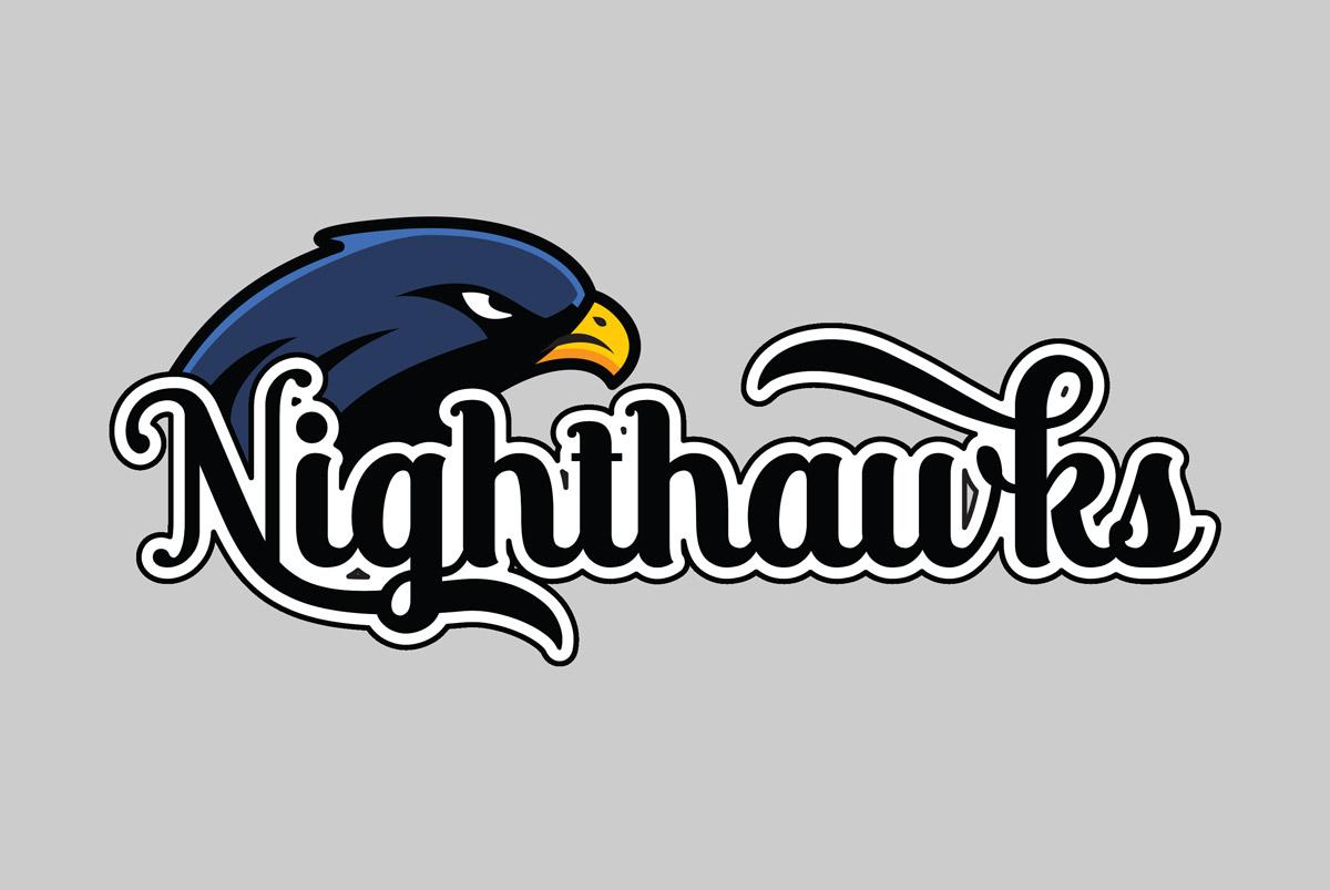 Newcastle Nighthawks Logo